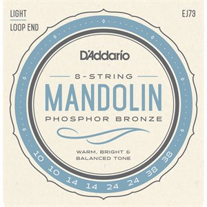 D'ADDARIO EJ73 MANDOLIN, PHOSPHOR BRONZE, LIGHT, 10-38